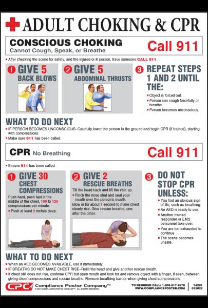 Adult Choke Saving Poster