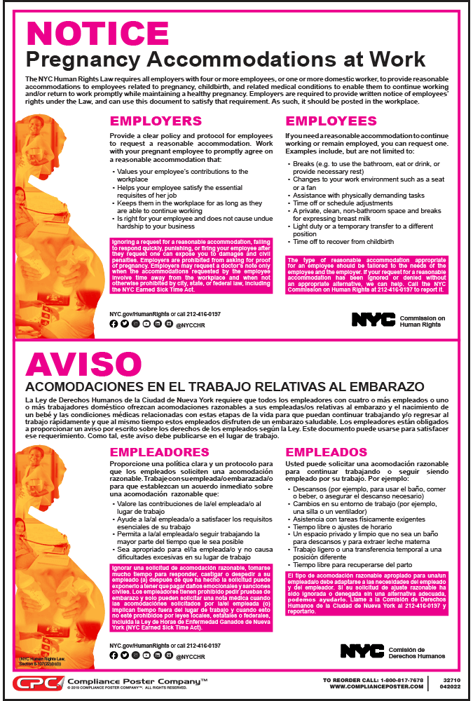 New York Pregnancy Rights Poster