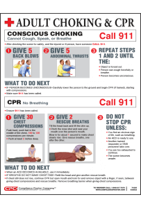 Small Adult Conscious Choking and CPR Poster - English