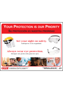Eye and Face Protection Poster